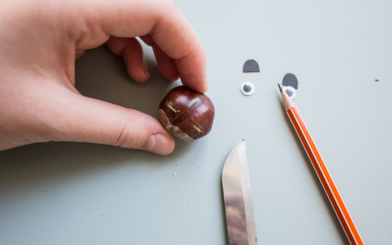 Kastanientiere basteln – Kastanie einritzen für Ohren des Bärs